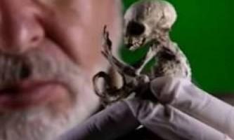 10 Самих страшних знайдених істот, і ким вони виявилися насправді