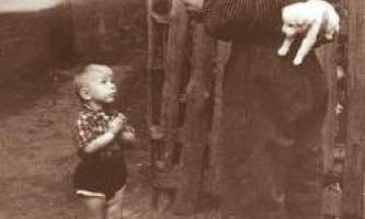 30 Самих зворушливих історичних фотографій