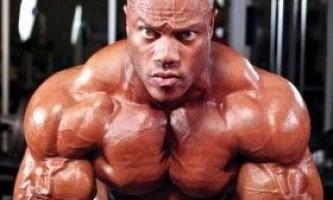 Адаптація м`язів до зростання в бодібілдингу