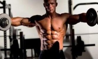 Базові вправи на всі групи м`язів