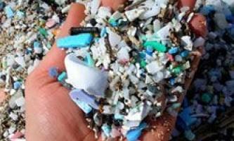 Чим загрожує пластикове сміття в океані?