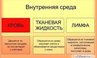 Чим кров відрізняється від лімфи?