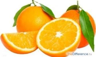 Чим відрізняється апельсин від мандарина?