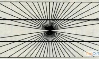 Чим відрізняється ілюзія від галюцинації?