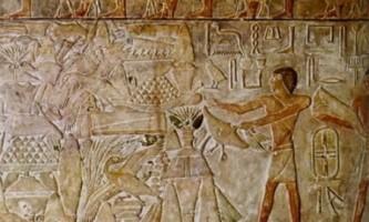 Чим відрізняється культура від цивілізації?