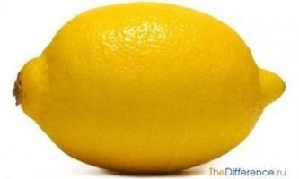 Чим відрізняється лимон від лайма?