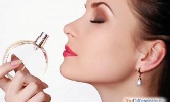 Чим відрізняється аромат від ароматизатора?