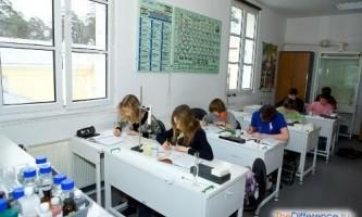 Чим відрізняється школа від гімназії?