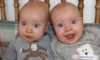Чим відрізняються близнята від двійнят?