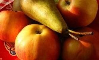 Чорниця, груші та яблука вбережуть від діабету