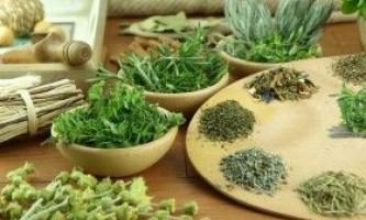 Чистка печінки травами