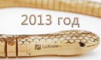 Що очікувати в 2013 рік змії?
