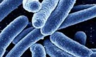Інфекційна діарея та її причини
