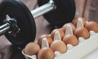 Яєчний протеїн в бодібілдингу