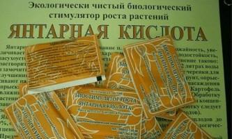 Янтарна кислота: користь і шкода!