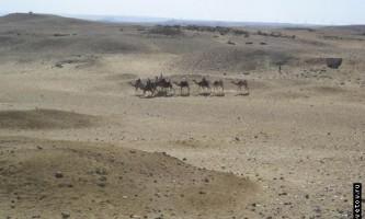 Екскурсія в кольоровий каньйон, єгипет