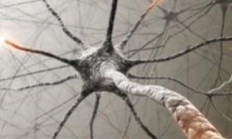 Як використовувати світло, щоб контролювати мозок