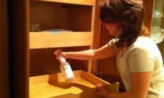 Як позбутися від клопів в домашніх умовах?