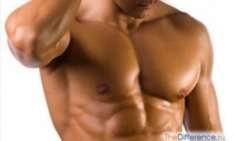 Як накачати грудні м`язи в домашніх умовах