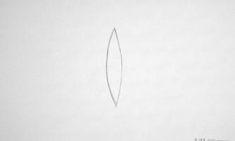 Як намалювати просту метелика олівцем