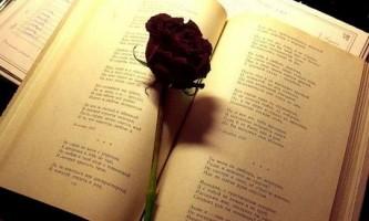 Як навчиться писати і складати вірші з нуля?