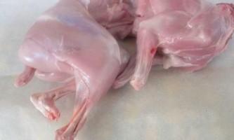 Як відрізнити м`ясо кролика від м`яса кішки?
