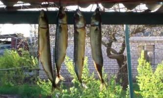 Як правильно коптити рибу?