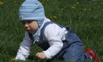 Як правильно вибирати і використовувати дитячі ходунки