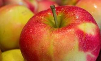 Як приготувати домашній яблучний сидр