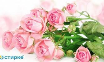 Як продовжити життя букету зі свіжих троянд