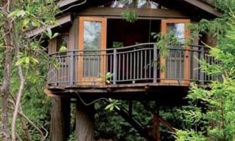 Як зробити будинок на дереві?