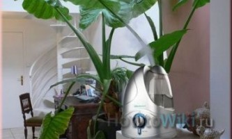 Як зволожити повітря в будинку?