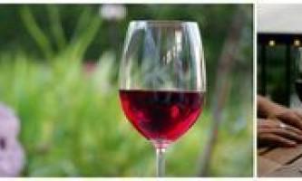 Вчимося вибирати вино грамотно і по ситуації
