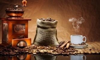 Як вибрати електричну кавомолку?