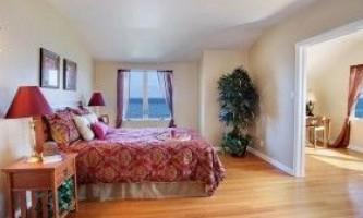 Які вибрати кімнатні рослини для спальні?