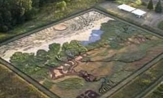 Картина ван гога, намальована на величезному полі