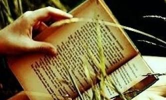 Класична література допомагає краще зрозуміти людей