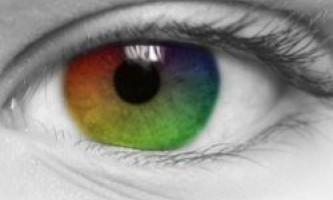 Червоно-зелений і синьо-жовтий: унікальні кольори, які ми не можемо бачити