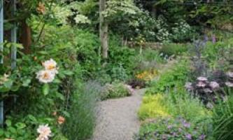 Ландшафтний дизайн садової ділянки своїми руками: поради професіоналів