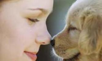 Любиш дівчину - люби і її собаку