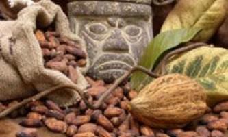 Майя готували страви з шоколаду ще в незапам`ятні часи