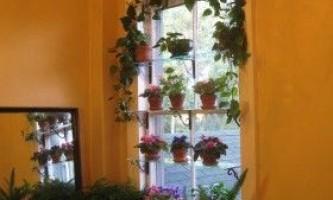 Майстер-клас зі створення етажерки, полиці для квітів, розсади