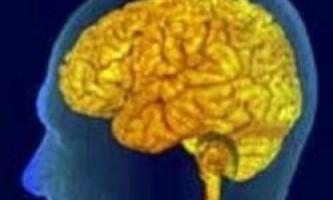 Мозок двомовних людей пригнічує погані слова