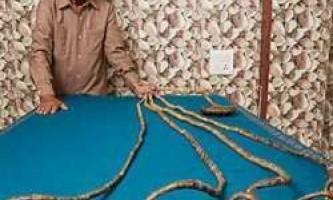 Чоловік з найдовшими нігтями в світі не стриг їх 60 років