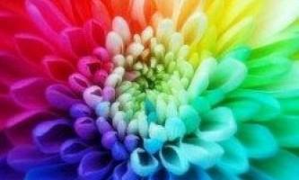 Ми всі бачимо кольору неоднаково