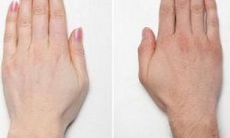 На які здібності вказують пальці рук