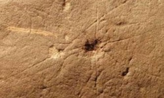 Знайдений найдавніший скелет