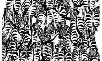 Знайдіть борсука серед зебр і телефон на килимі