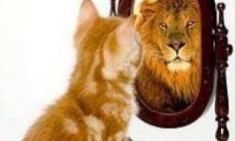 Наскільки точна наша самооцінка?
