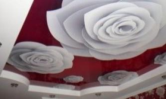 Натяжні стелі з фотодруком: види і дизайн